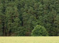 landschaft-naumburg12